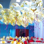 Ведущий, тамада на свадьбу, корпоратив, юбилей, Новосибирск