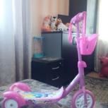 Продам детский трехколесный самокат, Новосибирск