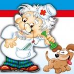 Экстренная ветеринарная он-лайн помощь вашей собаке, Новосибирск