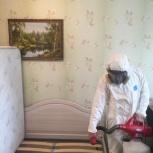 Уничтожение клопов + барьерная защита в подарок!, Новосибирск