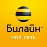 Билайн. Золотая категория, Новосибирск