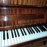 Фортепиано Petrof, Новосибирск