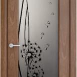 Продам две межкомнатные двери (Шпон) 700*2000, Новосибирск