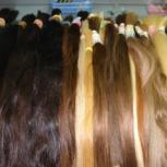 Продажа и Наращивание волос (славянка, южка, европа, азия), Новосибирск