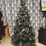 Искусственная елка (сосна пушиста) - 180 см + гирлянда, Новосибирск