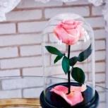 Розовая роза в колбе премиум, Новосибирск