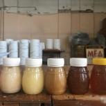 Мед круглый год разных сортов, Новосибирск