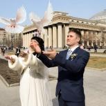 Фотограф на свадьбу, юбилей, Новосибирск