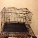 Клетка для кошек и собак мелких пород, Новосибирск