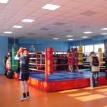 Детский боксерский мешок SportStyle. Для любого возраста ребенка, Новосибирск