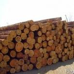 Продажа леса, Новосибирск