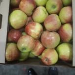 Яблоки с юга России оптом, Новосибирск