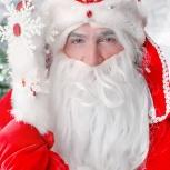 Дед мороз и снегурочка. Домашнее поздравление детей. Аниматоры, Новосибирск