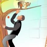 Спасение животных. Снять кота с дерева, Новосибирск