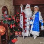 Дед Мороз в Новосибирске. Услуги Деда Мороза, Новосибирск