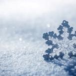 Сброс снега, Новосибирск