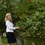 Няня, Новосибирск