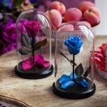 Роза в колбе из мультика Красавица и Чудовище, Маленький Принц, Новосибирск
