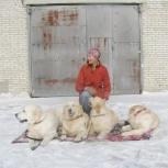 Воспитание щенка, а также взрослой собаки. Индивидуальные занятия, Новосибирск