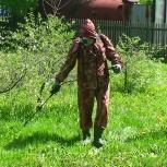 Обработка от клещей в Новосибирске, Новосибирск