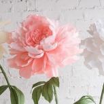 Мастер-класс. Гигантские цветы, Новосибирск