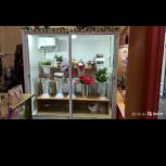 Холодильная камера для цветов и прочего, Новосибирск