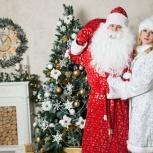 Дед Мороз и Снегурочка у Вас в гостях!, Новосибирск