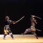 СИНКАГЭ-РЮ школа традиционного японского фехтования, Новосибирск