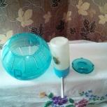 Продам шарик для хомяков, Новосибирск