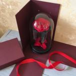 Голубая Роза в колбе Premium Арт 26564, Новосибирск