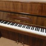 """Пианино """"Petrof"""", Новосибирск"""