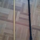 Две трости для ходьбы, Новосибирск