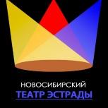 Новый год ДЛЯ ВАС И ВАШИХ ДЕТЕЙ!, Новосибирск