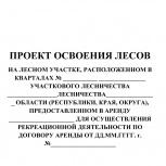 Проект освоения лесов, Новосибирск