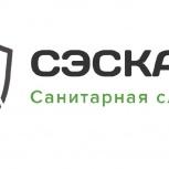 Оказываем услуги по борьбе грызунами и насекомыми в Новосибирске, Новосибирск