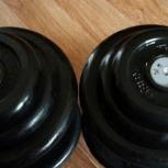 Продам гантели barbell по 18,5 кг 2 штуки!, Новосибирск