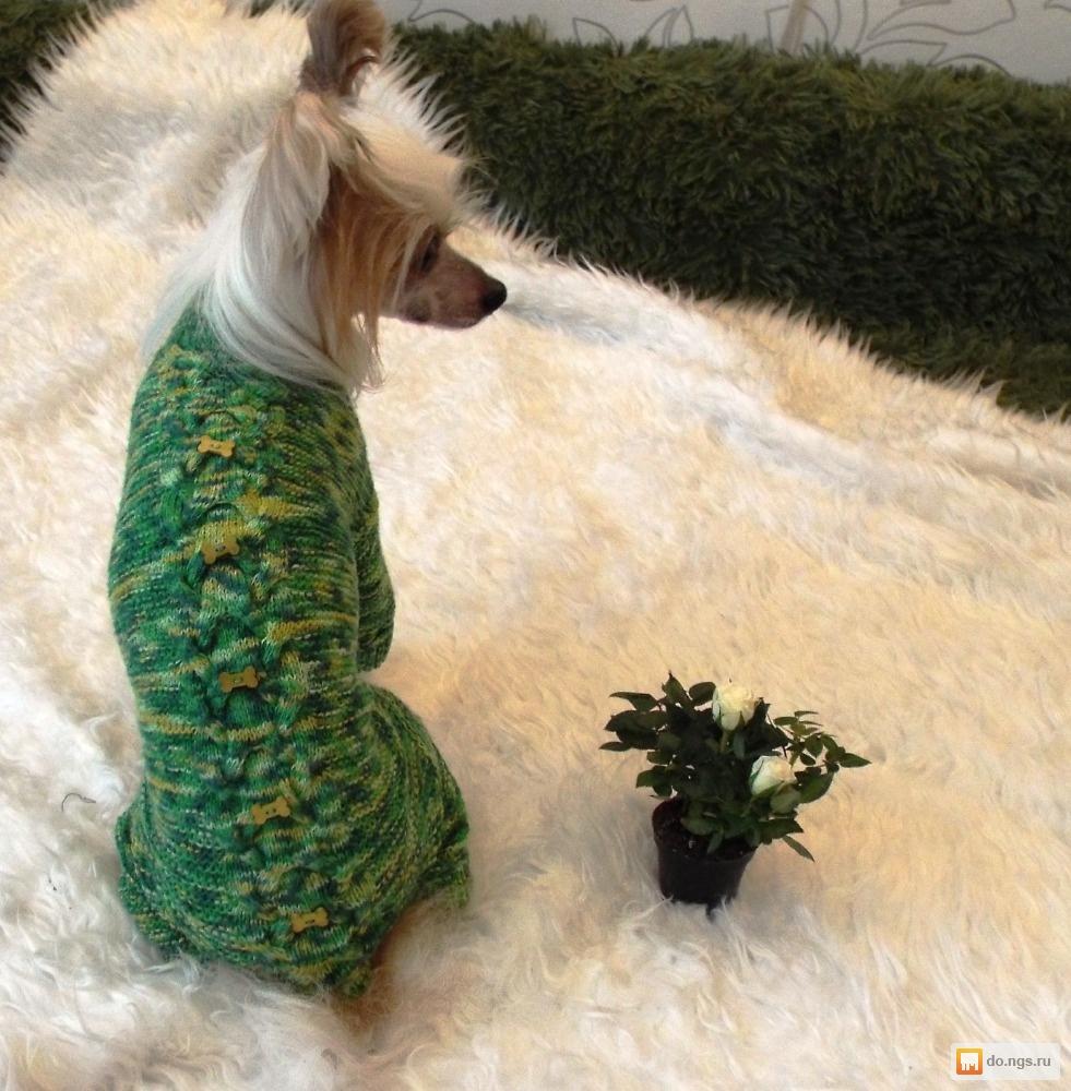 вязаная одежда для собак в новосибирске цена договорная нгс