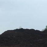Чёрный грунт, глина, Новосибирск