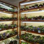 Стеллажи для рассады, растений, Новосибирск