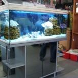 Изготовление аквариумов и крышек для аквариумов., Новосибирск