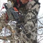 Арбористика: спил деревьев. Высотные работы., Новосибирск