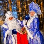 Дед мороз и Снегурочка на дом!, Новосибирск