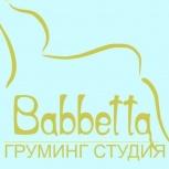 Груминг стрижка кошек и собак, Новосибирск