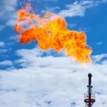 Ищем инвестора. Нефтегазовый сектор., Новосибирск