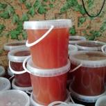 Продам свежий мед, Новосибирск
