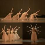 Классический балет для всех, Новосибирск