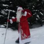 Агентство Дед Мороз и Снегурочка в Новосибирске, Новосибирск