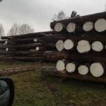 продажа леса-кругляка, Новосибирск