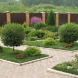 Ландшафтный дизайн, озеленение, садовники, агрономы, Новосибирск