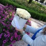 Розы в коробках 17 шт, Новосибирск